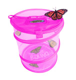 Butterfly Growing Kit - Pink
