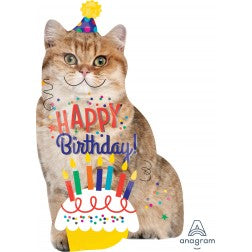 Cat happy birthday