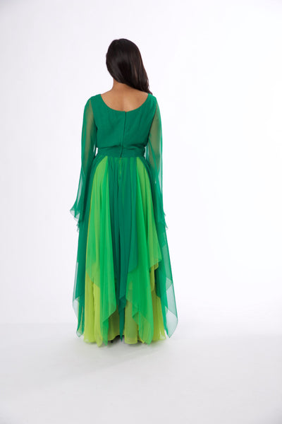 For Rental or Purchase Vintage 1970s Shades of Green Chiffon Evening G