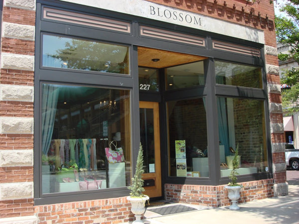 Blossom Shoes & Such Retail Location in Greenwood, SC