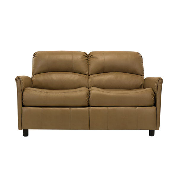 60 inch leather sleeper sofa refil sofa for Sofa bed 60 inches