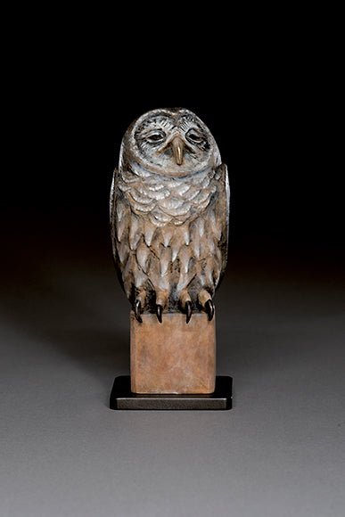 Old Owl Bronze by Hib Sabin