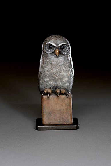 Young Owl Bronze by Hib Sabin