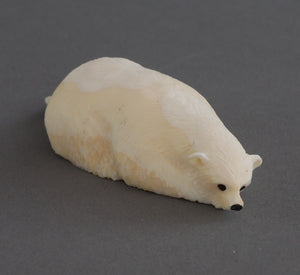 Crawling Polar Bear by James Uglwook