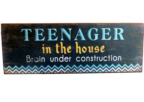 Plaque - Teenager In The House