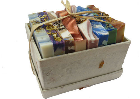Soap Large Sample Box Large