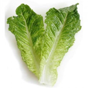 Lettuce Romaine Green 250g