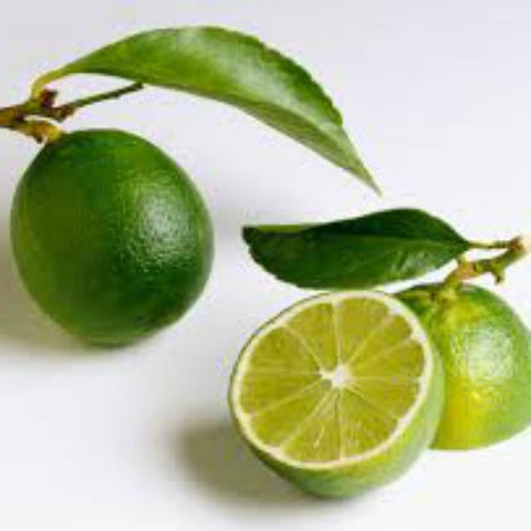 Seedless Lime/ Bearss Lime 200g