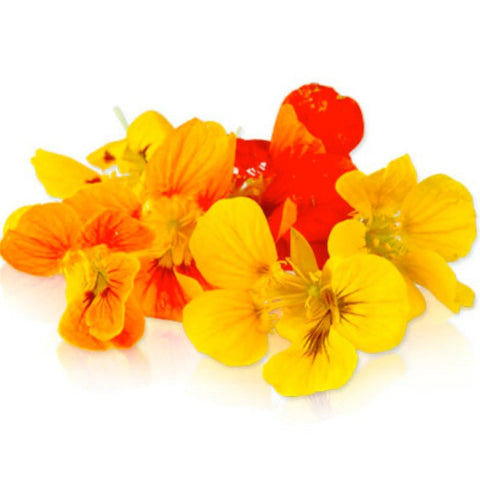 Edible Flowers: Nasturtium (Packet/15-20 Flowers)