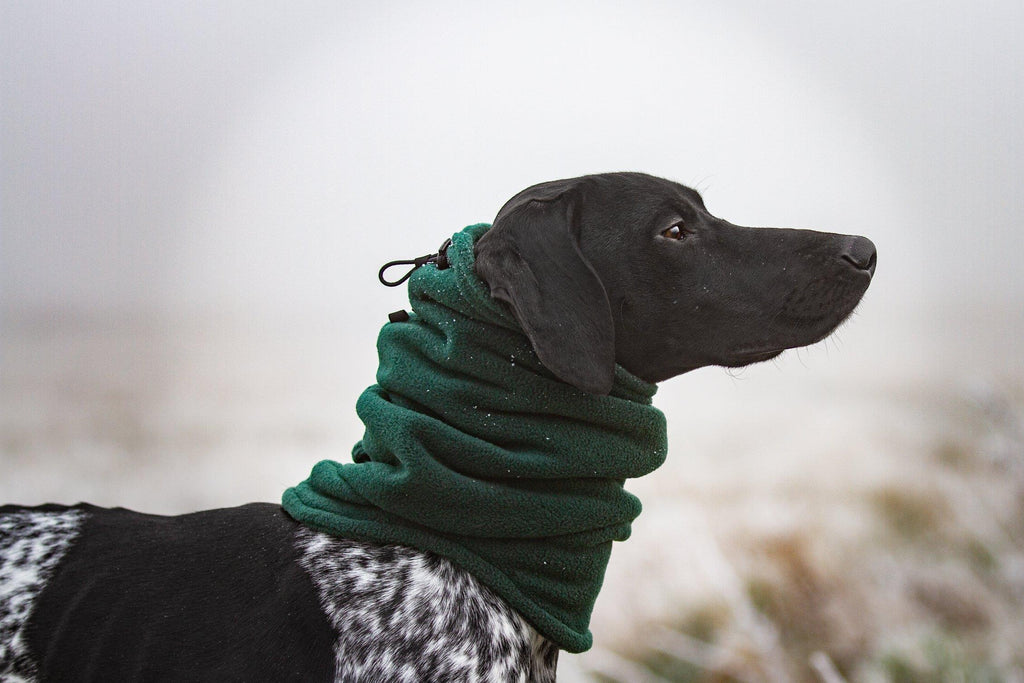 FLEECE DOG SNOOD / NECK GAITER