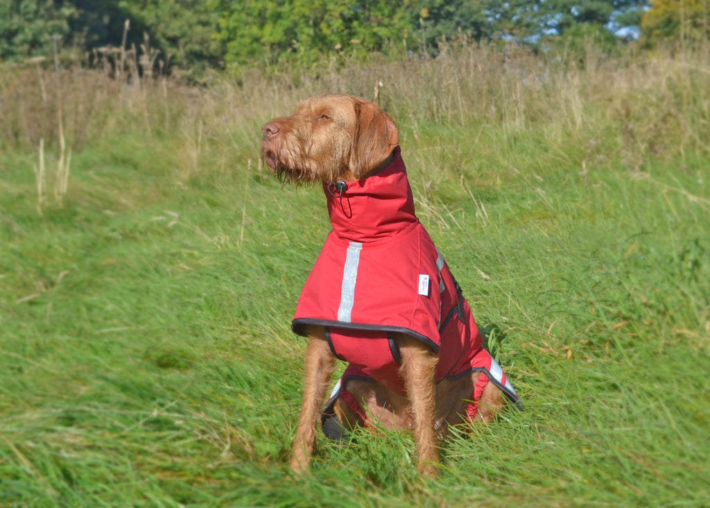 BRORA WATERPROOF DOG COAT