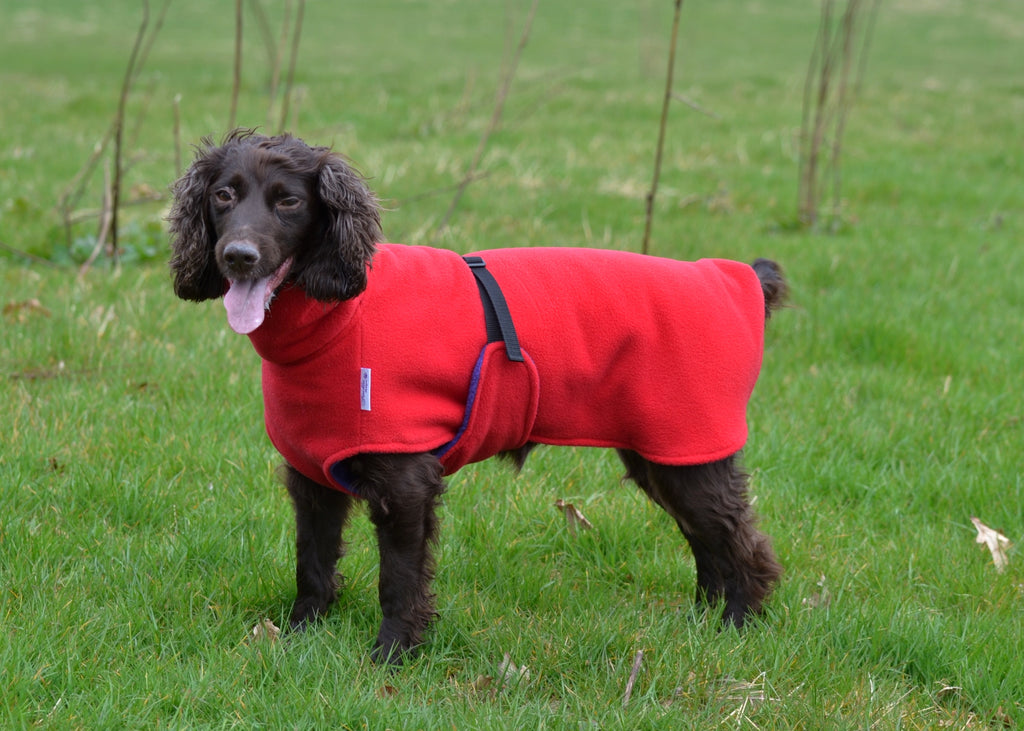 ETIVE FLEECE DOG COAT