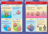 CE/KS3: Science: Biology: Cells & Organisation (Part 1)
