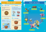 KS2: Science: Biology: Plant Growth & Lifecycles