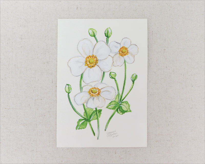 """Dainty Anemone"" an Original Watercolor Painting"