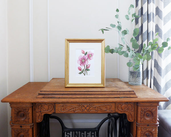 """Enchanting Hellebore"" an Original Watercolor Painting"