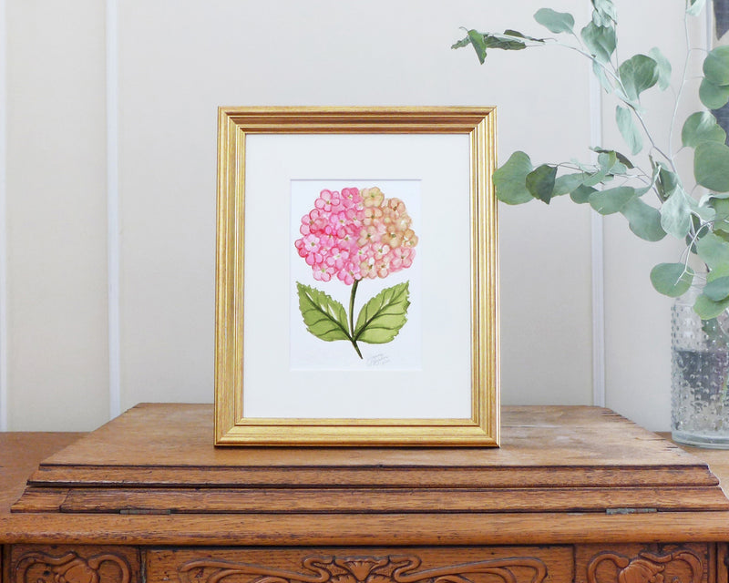 """Champagne Pink Hydrangea"" an Original Watercolor Painting"