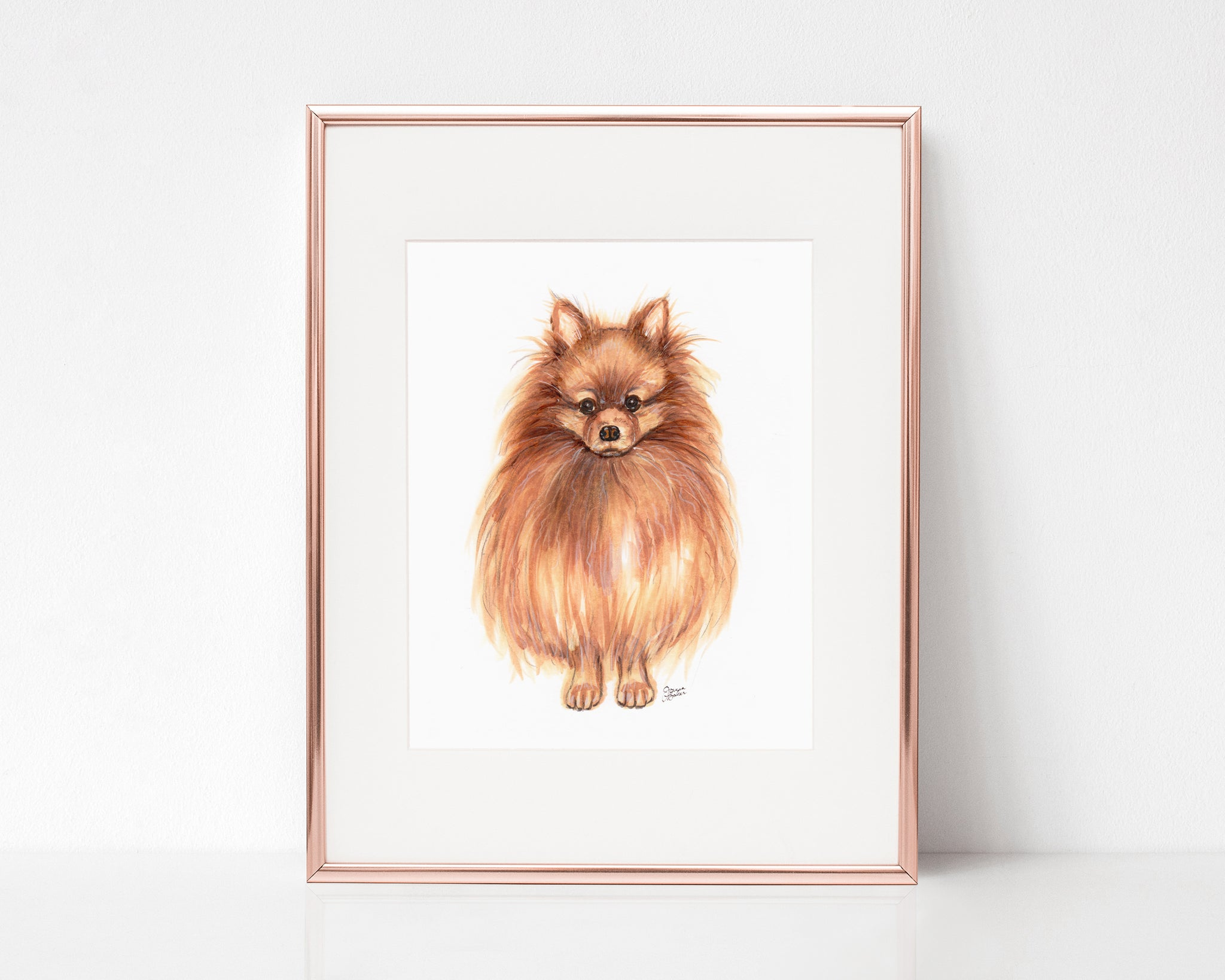 Lola the Pomeranian Art Print