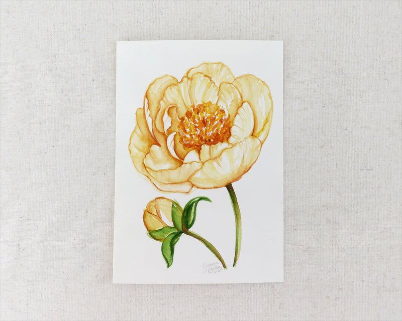 """Yellow Peony"" an Original Watercolor Painting"