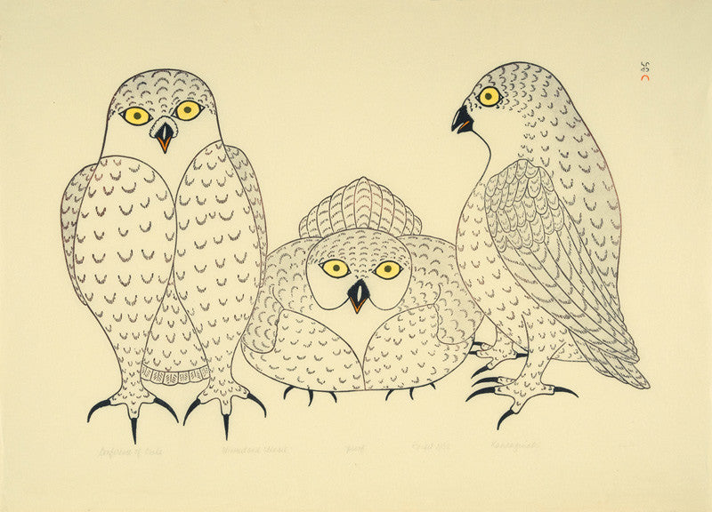 Conference of Owls - Northern Expressions