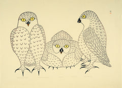 Conference of Owls by Kananginak Pootoogook. Cape Dorset Print Collection