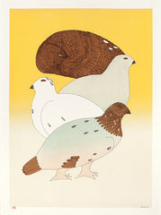 FOUR SEASONS - Northern Expressions | Ningeokuluk Teevee - Print | | Canadian Indigenous & Inuit Art