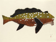 KANAJURUPALLIAJUQ (TURNING INTO SCULPIN) - Northern Expressions | Papiara Tukiki - Print | | Canadian Indigenous & Inuit Art