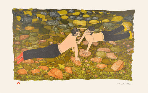 Northern Expressions I 2014 Cape Dorset Print Collection