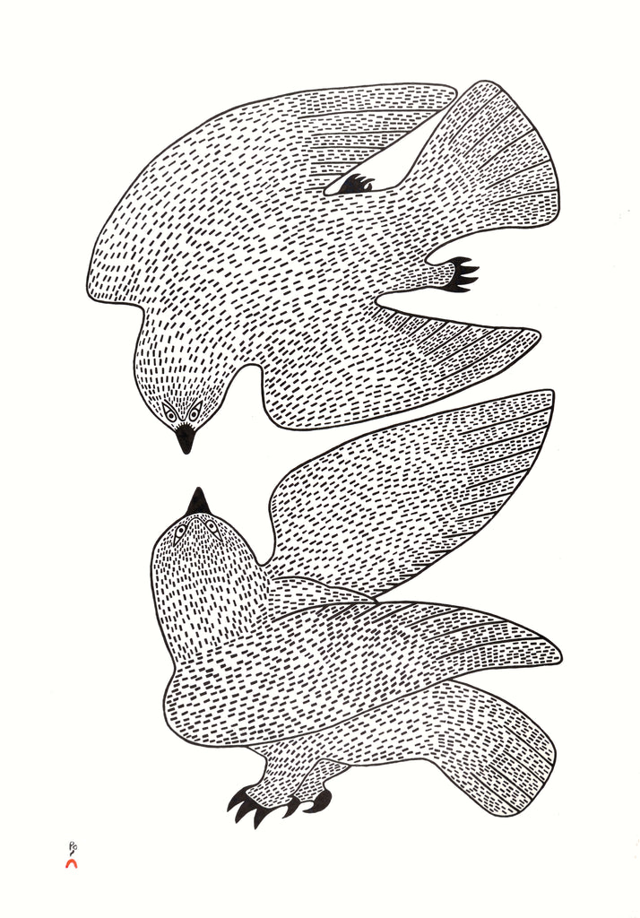 Sparring Owls - Northern Expressions | QUVIANAQTUK PUDLAT - Print | | Canadian Indigenous & Inuit Art