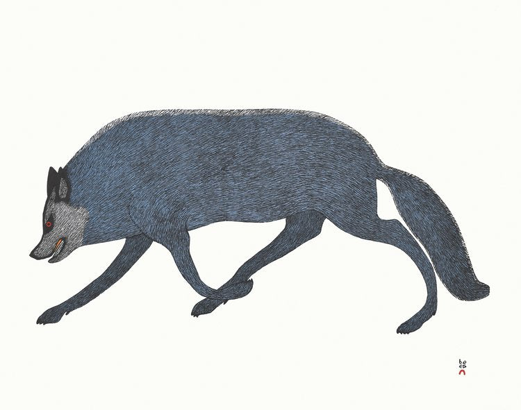 Tundra Wolf - Northern Expressions | QUVIANAQTUK PUDLAT - Print | | Canadian Indigenous & Inuit Art