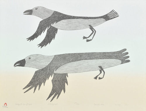 SEAGULL IN FLIGHT - Northern Expressions | Lucy Qinnuayuak - Print | | Canadian Indigenous & Inuit Art