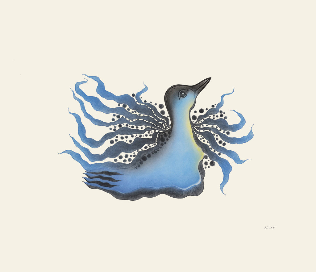 Sparkling Loon by Pitaloosie Saila. Cape Dorset Inuit Print