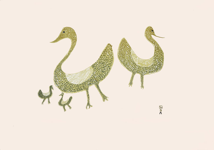 Family of Birds, 1965 - Northern Expressions | Sharni Pootoogook - Print | | Canadian Indigenous & Inuit Art