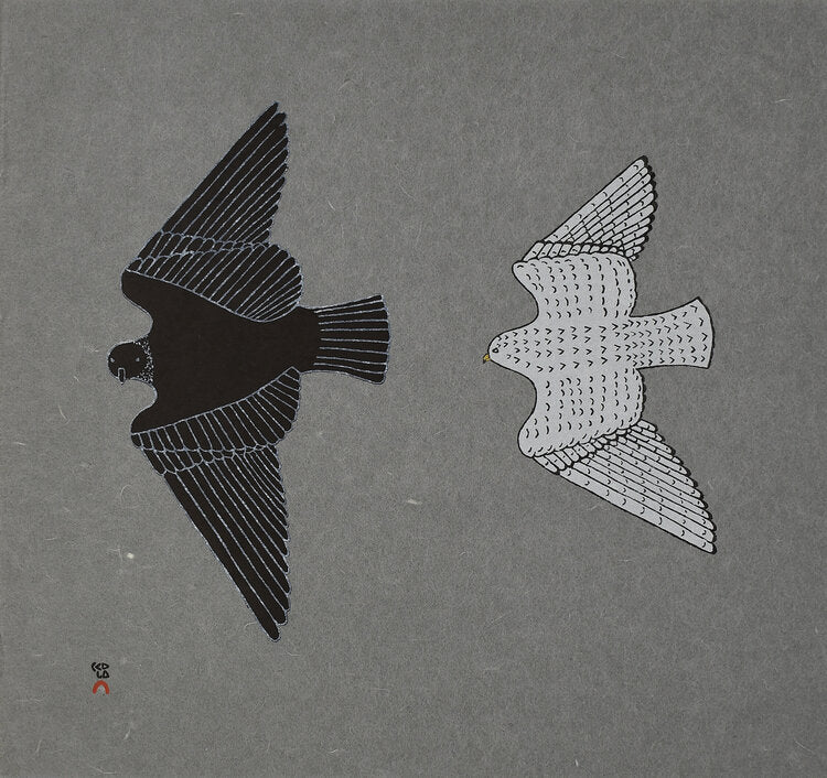 Aerial Pursuit - Northern Expressions | Johnny Pootoogook - Print | | Canadian Indigenous & Inuit Art