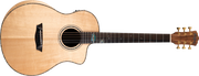 Washburn Bella Tono Allure SC56S - Gloss Natural