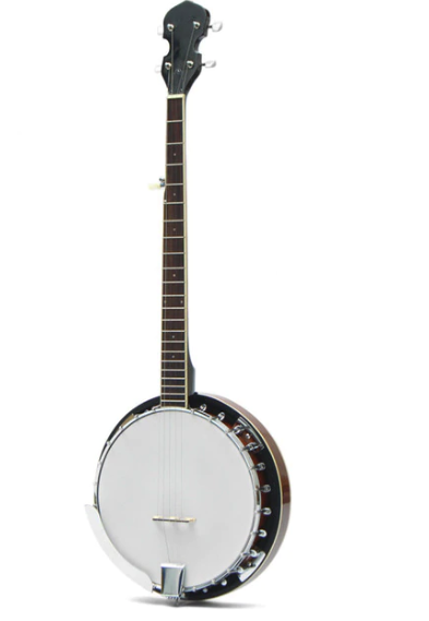Electric Lifestyles ES-2500 5-String Banjo