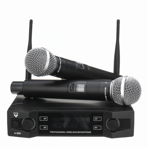 Electric Lifestyles A-666 Wireless Microphone System (Dual Mic Set)