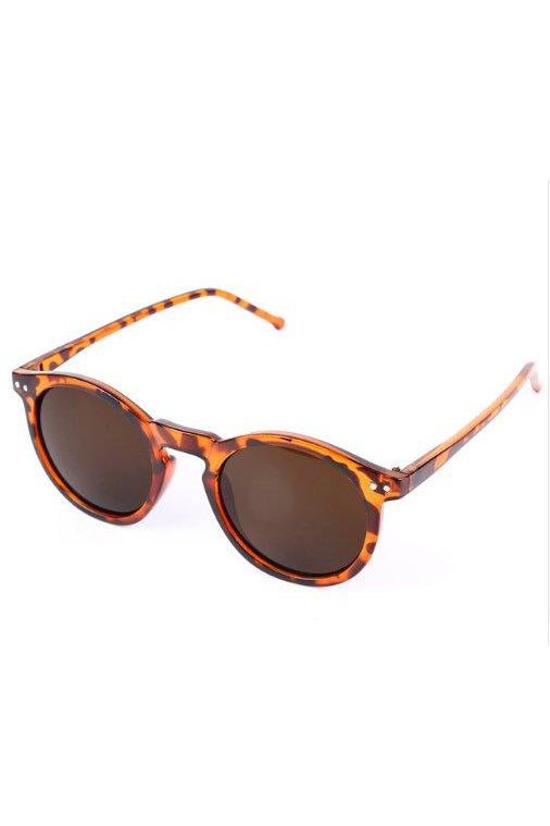 Sunglasses - Round Wayfarer Sunglasses Tortoise Brown