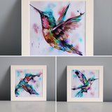 3 for 2 on hummingbird prints - Sian Storey Art