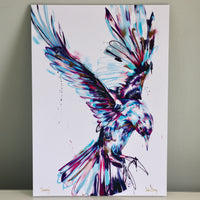 3 for 2 print offer - The Bird Collection - save £40 - Sian Storey Art