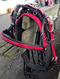 PONY LUXURY RACE HARNESS