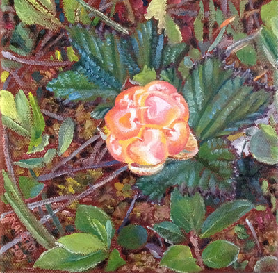 Cloudberry Kiss (oil on canvas 6x6 in.)