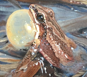 Chorus Frog Spring Song (art print on canvas 12x12 in.)