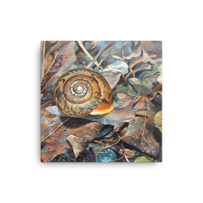Neohelix Snail, oil painting, print on canvas 12x12 in.
