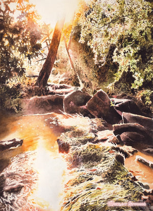 """A Secret Place"" - Original Watercolor of a Sunlit Brook by Samuel Worley"