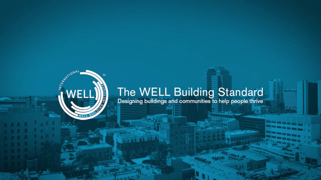 Interview with Anja Mikic from International WELL Building Institute™