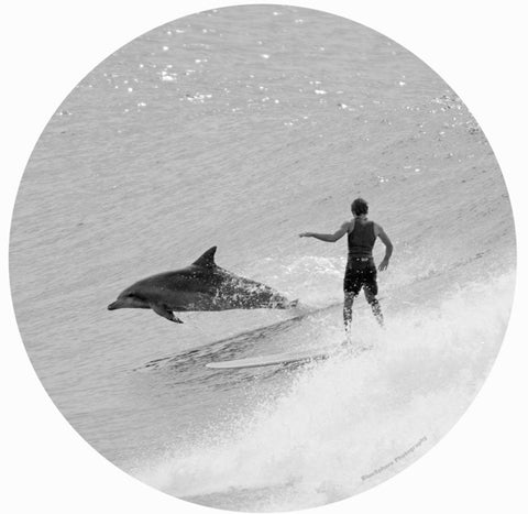 Wall DECAL - Dolphin Ride by Shelli Bankier