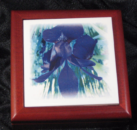 Blue Iris 4.25 Rosewood Tile Jewelry Box