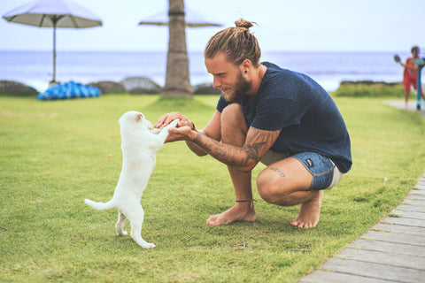Dog with a man and a man bun