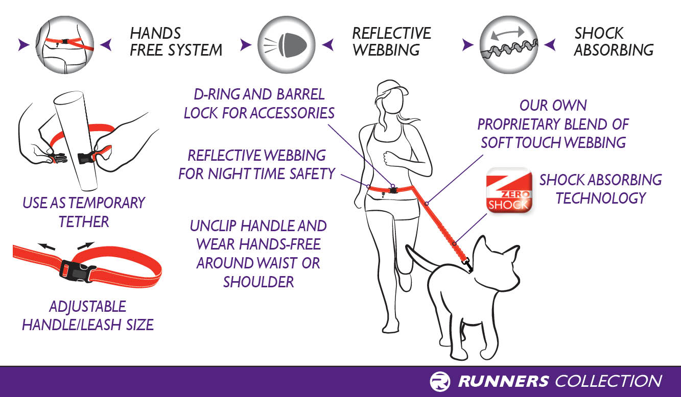 Running Dog Leash with Bungee Technology for Hands Free Leash